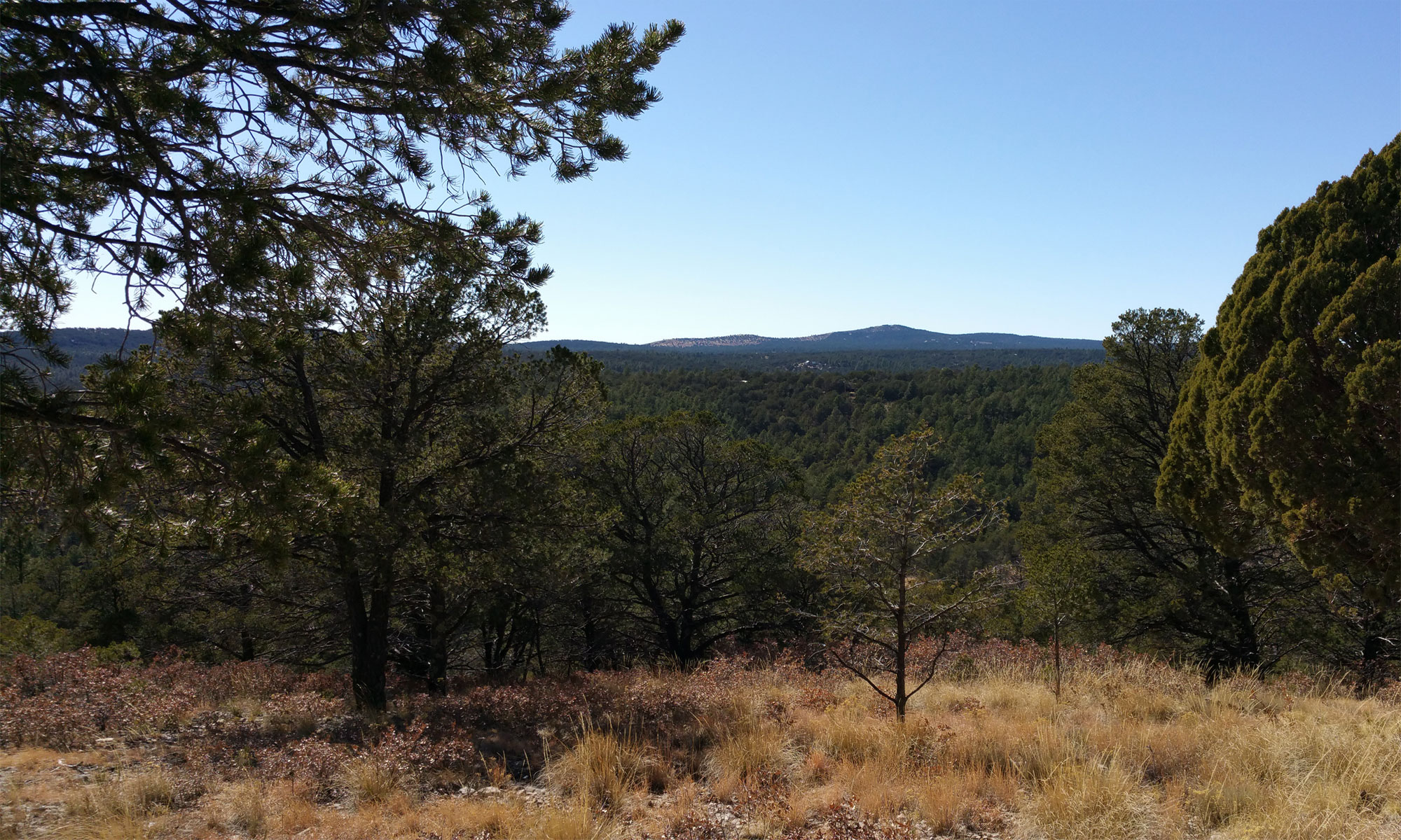 Remote Mountain Land for Sale